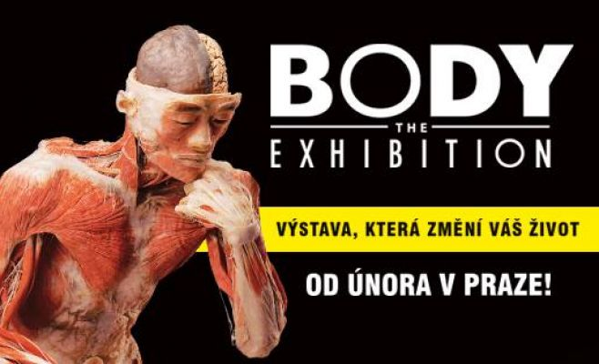 Выставка Body The Exhibition