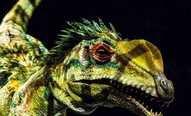 Шоу «Прогулки с динозаврами»